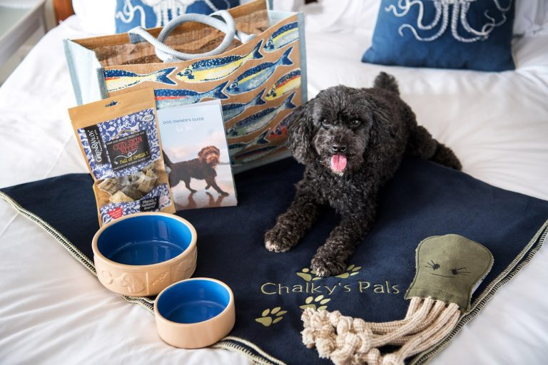 Dog-friendly-rooms-Cornwall-rick-stein