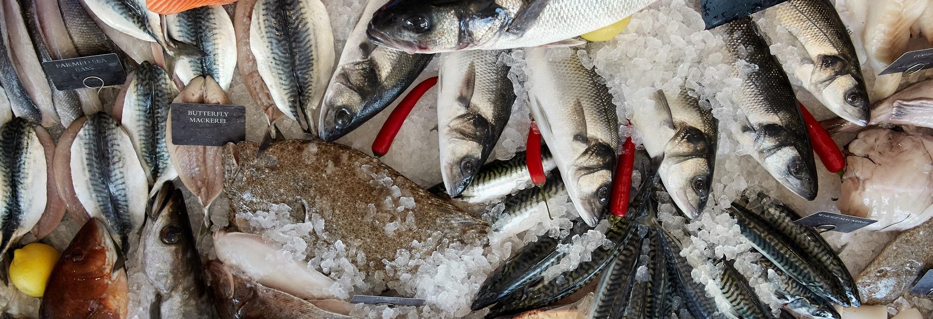 Steins-Online-Fishmongers